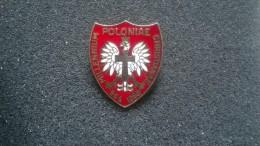 Pin POLONIAE MILLENNIUM CHRISTIANAE 966-1966 -P181 - Pin's