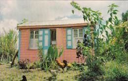 Antigua St John's Gaily Painted House - Antigua & Barbuda