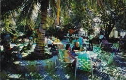 Antigua St John's D'Arcy's Bar And Restaurant Kensington Court - Antigua & Barbuda