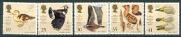 Great Britain 1996 - Water Birds, Set Of 5 Stamps, MNH** - 1952-.... (Elizabeth II)