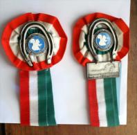 ITALIA 1986 - 2 COCCARDE CONCORSO IPPICO DI PREDAZZO - Equitazione