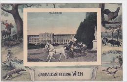 Austria - Wien - Jagdausstellung - Schonbrunn - Castello Di Schönbrunn