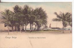 4-Congo Belga-Alberi Di Cocco-v.1906 X Paris-France. - Congo Belga - Altri