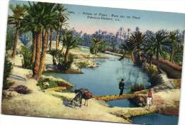 Sc�nes et Types Pont sur l'Oued Palmiers Datiers Ane Coloris�e  Recto verso