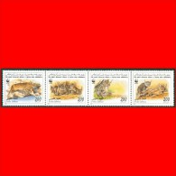 LIBYA - 1997 WWF Felis Lybica - Set (MNH) - W.W.F.