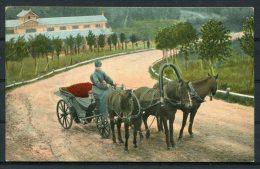 Russia Troika Horse Carriage E.G.S.i.S. Postcard - Russia