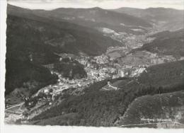 D586-HORNBERG-Totalansicht- - Hornberg