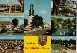 GRUSS  AUS  ESCHBORN  AM  TAUNUS      (VIAGGIATA) - Germania