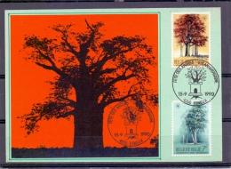België - Fete Des Arbres- 85e Anniversaire - Esneux 15/9/1990  (RM9309) - Bäume
