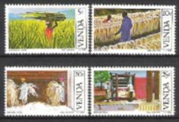 Venda Südafrika RSA 1982 Wirtschaft Industrie Landwirtschaft Ackerbau Sisal Agaven Fasern, Mi. 54-7 ** - Venda