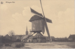 Windmolen Molen   Millegem - Mol       Nr 2831 - Windmills