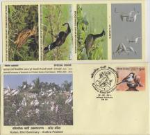 India  2015  Birds  Cranes  Kollaru Bird Sanctuary  KAKINADA  Cover #  65604  Inde - Cranes And Other Gruiformes