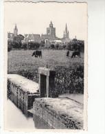 Poperinge, zicht op stad van aan de kom (pk18921)