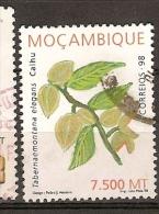 Mozambique (D97) - Mozambico