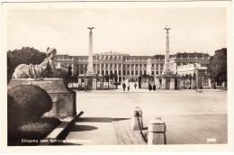 Eingang Zum Schloss Schönbrunn (1950)  - Stempel: 'Freigegeben Österreichische Zensurstelle SZ ' - Wien - Österreich - Château De Schönbrunn