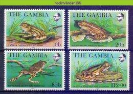 Mzp308 FAUNA AMFIBIE KIKKERS AMPHIBIAN FROGS FRÖSCHE RANA GAMBIA 1982 PF/MNH - Frogs