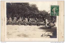 54 NANCY CARTE PHOTO CONCOUR DE TIR TRES ANIMEES.CPA BON ETAT - Nancy