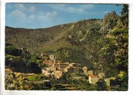 CPSM ORTO (Corse Du Sud) - 650 M Vue Générale Et Le Mont Sant Eliseo 1507 M - France