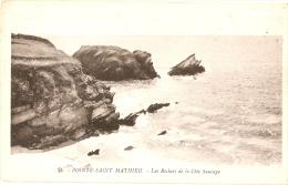 PLOUGONVELIN - Pointe SAINT-MATHIEU - N°21 G. ARTAUD - Plougonvelin