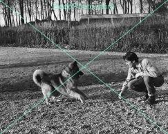 Alain Delon - 0034 - Glossy Photo 8 X 10 Inches - Berühmtheiten
