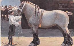 ILLUSTRATEUR A IDENTIFIER CHEVAL HORSE EQUITATION HIPPISME - Illustrators & Photographers