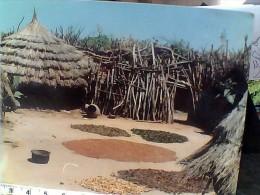 UGANDA VILLAGE KARIMOJONG   N1975 EU17776 - Uganda