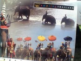 TAILANDIA  ELEFANTI  ELEPHANT  FESTA  N1990 EU17785 - Tailandia