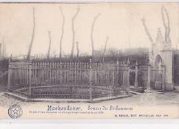 HAEKENDOVER : Source Du St-Sauveur - Tienen