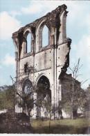 SAINT MAURICE SUR AVEYRON (45-Loiret), Fontaine St Jean, Ruines De L'Abbaye De Courtenay, Ed. SPADEM Vers 1960 - France
