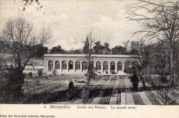 Jardin Des Plantes , La Grande Serre  Tampon De L'université - Montpellier