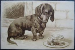 Präge-Lithographie Künstlerkarte Teckel Dachshund Dackel Jagd Hunting Dog Maus Mausefalle - Hunde