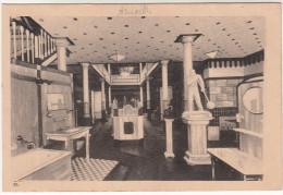 Tervueren, Nouveau Musée Du Congo (pk19102) - Tervuren