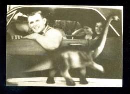 *Francesc Abad - Dinosaures...* BCN 1987-88. Nueva. - Exposiciones