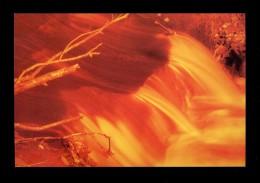 *AFOCA* Canovelles 2001. Nueva. - Exposiciones