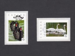 SWANS ,Cisne ,CYGNE, Cigno, SCHWAN.  Set Of 2 Picture Postage Mint, Unused Stamps, Canada  2014 [p7sw2] - Cygnes