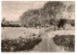 S2997 - Membach - Paysage Pittoresque - Baelen