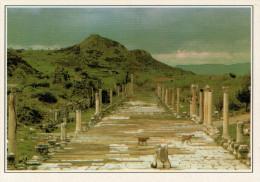 TURCHIA   EFESO:  LA VIA  ARCADIANA      (NUOVA CON DESCRIZIONE DEL SITO SUL RETRO) - Turchia