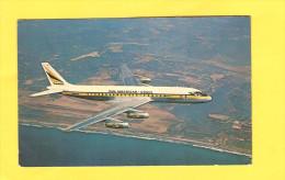 Postcard - Aviation, PANAGRA     (19456) - 1946-....: Modern Era