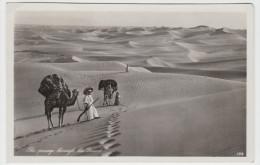 The Passage Through The Desert - Non Classés