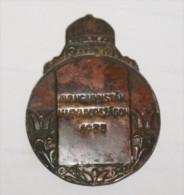 """UNGHERIA - 1933 , MEDAGLIA DI BRONZO  """"AVANGARDISTAK MAGYARORSZAGON"""" - Medals"""