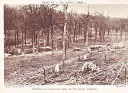 23722 Guerre 1914-18 Dans No Man´s Land- SAFARA 34 Dolly 31350 Cochons Promenade Fils Fer Barbeles - Guerre 1914-18