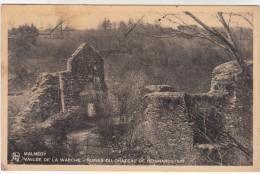 Neufchâteau, Les Vieux Toils Aus Cheminées....  (19203) - Neufchâteau