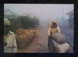 *Jordi Bas - Treballadors A Madagascar* Barcelona 2001. Circulada. - Exposiciones