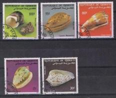 Djibouti Y/T 569 / 573 (0) - Djibouti (1977-...)