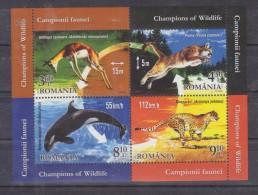 2015 - Champions Of  Wildlife - Blokken & Velletjes