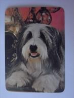 1 CALENDAR CALENDARIO CALENDRIER KALENDER SMALL - ANIMAL CÃO CAO DOG CHIEN CANE HUND HOND PERRO - Calendriers