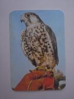 1 CALENDAR CALENDARIO CALENDRIER KALENDER SMALL - ANIMAL ZOO EAGLE - Klein Formaat: 1981-90