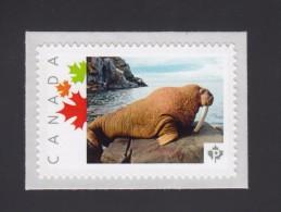 WALRUS Picture Postage Mint, Unused Stamp, Canada  2014 [p6sn1] - Marine Mammals