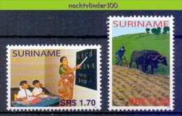 Nch1338 UPAEP U.P.A.E.P. ONDERWIJS KOEIEN PLOEGEN AGRICULTURE COWS PLOUGHING EDUCATION ARMUT SURINAME 2005 PF/MNH - Vaches