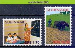 Nch1338 UPAEP U.P.A.E.P. ONDERWIJS KOEIEN PLOEGEN AGRICULTURE COWS PLOUGHING EDUCATION ARMUT SURINAME 2005 PF/MNH - Koeien